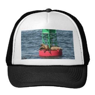 Stinky Dingy Hats