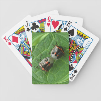 Stinky Lovers ~ Playing Cards
