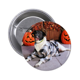 Stinky - Mixed Breed - Farber Pinback Buttons