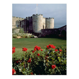Stirling Castle, Scotland flowers Postcard