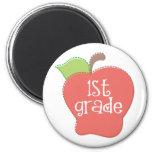 Stitch Apple 1st grade