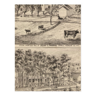 Stock farm in Orwell Vermont Post Cards