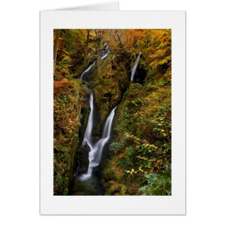 Stock Ghyll Force Card