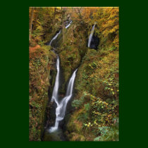 Stock Ghyll Force, The Lake District Photograph