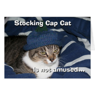 Stocking cap cat is not amused cards