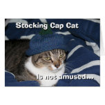 Stocking cap cat is not amused greeting card