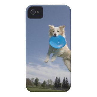 Stockton, California, USA iPhone 4 Covers