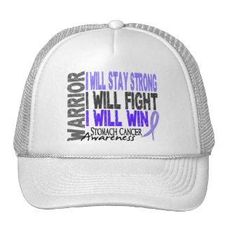 Stomach Cancer Warrior Trucker Hat