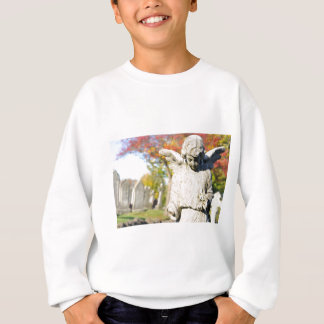 Stone angel sweatshirt