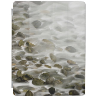 Stone Beach | Point Lobos State Reserve, CA iPad Cover