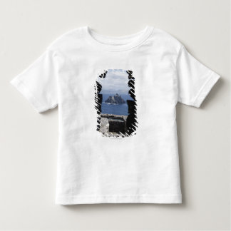 Stone Beehive Monk Huts Clochanson Skellig Michael Toddler T-Shirt