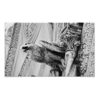 Stone Eagle Photograph