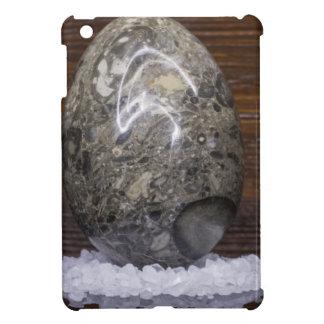 Stone Egg iPad Mini Cases