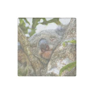 Stone Koala Magnet Stone Magnet