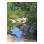 Stone Mountain Creek, Stone Mountain Georgia 1 Postcard