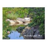 Stone Mountain Park Creek Stone Mountain GA 3 Postcard