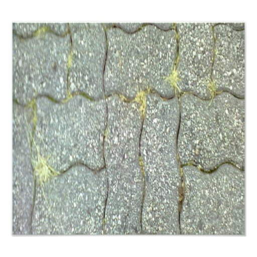 Stone Path Photographic Print