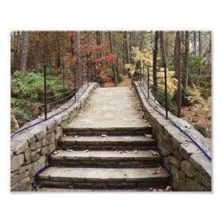 Stone Pathway Photographic Print