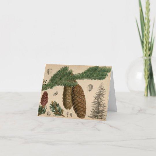 Stone Pine Christmas Card