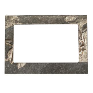 Stone Rose Magnetic Frames