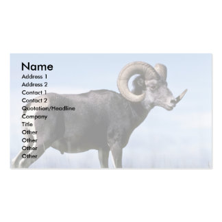 Stone sheep (Large adult ram) Business Card Template