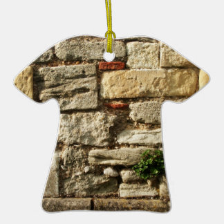 Stone Wall. With small plant. Ceramic T-Shirt Decoration