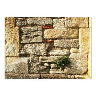 Stone Wall. With small plant. Custom Invite