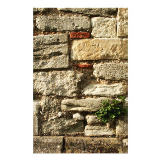 Stone Wall. With small plant. Stationery