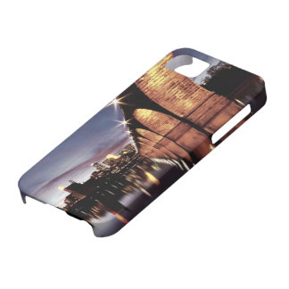 Stonearch Skyline iPhone 5 Cases