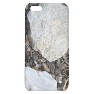 Stoned iPhone 5C Covers