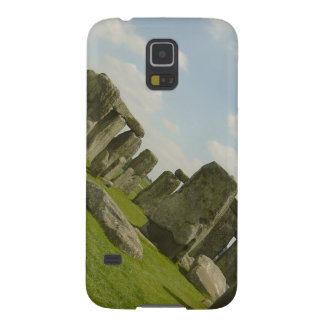 Stonehenge Cases For Galaxy S5