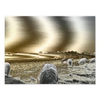 Stonehenge Sun Waves Photo Prints