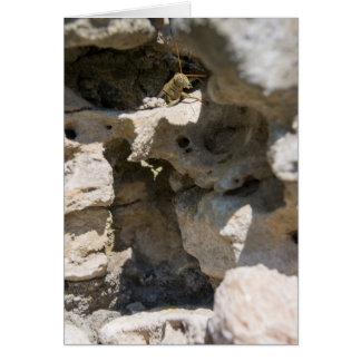 Stones | Desert Rose 147 Card