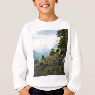Stones from the ground sweatshirt