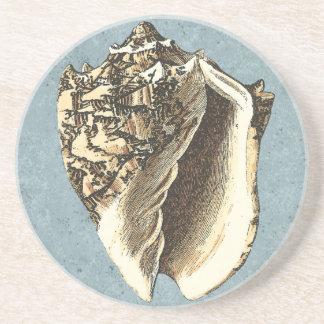 Stonewashed Conch Shell Coaster