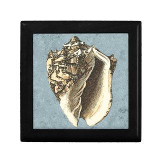 Stonewashed Conch Shell Gift Box