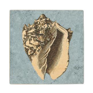 Stonewashed Conch Shell Wood Coaster
