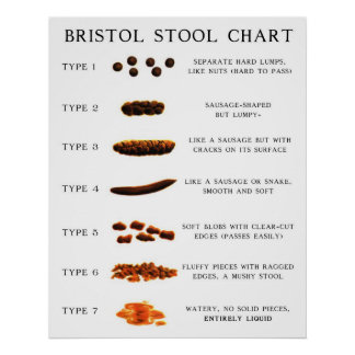 Poop Posters Zazzle Co Uk
