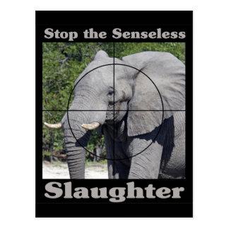 Stop Slaughter-Elephant Postcard