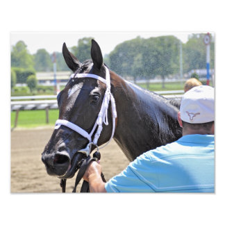 Stopchargingmaria victorious in her first race. photograph