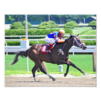 Stopchargingmaria victorious in her first race. photographic print
