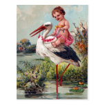 Stork and Baby From 1909 Postcard