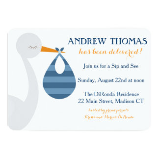 Stork Baby Invitation / Baby Announcement