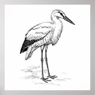 Stork Bird Black and White Cartoon Print