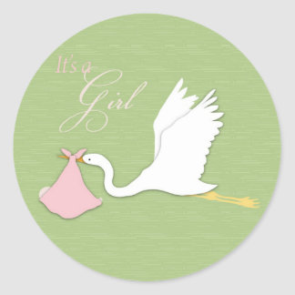 Stork Delivers Girl Sticker