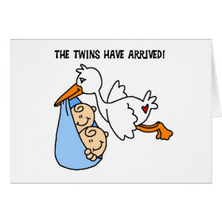 Stork Twin Arrival Card