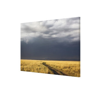 Storm clouds and road across gassy plains of the gallery wrapped canvas