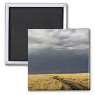 Storm clouds and road across gassy plains of the fridge magnets