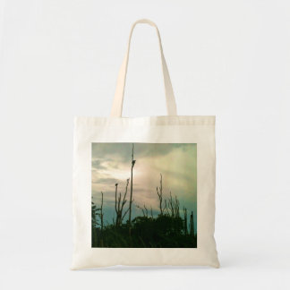 Storm Is Over Budget Tote Bag