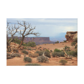 Storm Over Canyon Stretched Canvas Print